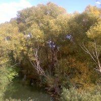 Осень :: Dima89 kras