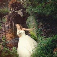 В заколдованном лесу :: Леонид Волков