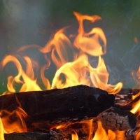 Пламя.. :: Екатерина Березина