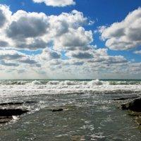 Небесные и морские барашки :: Елена Васильева