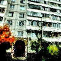 Осенние окна :: Igor Poluektov