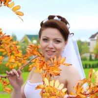Золотая осень. :: Елена Белянина