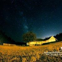 Звёздное Небо над Таллахасси :: Михайлов Михаил