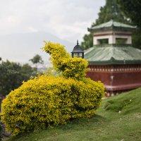 долина Катманду :: Наталья Захарова
