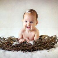 Гнездо :: Daria Dmitrieva