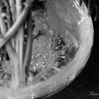 В октябре лед даже в вазе с цветами :: Екатерина Березина