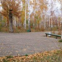 Осень, грустно... :: Людмила Геер