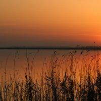 Рассвет на озере :: Sergey Xranitel