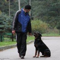 Пёс и хозяин :: Петр Зелинский