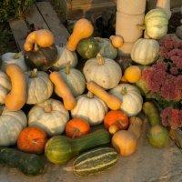 Урожай :: Даниел Кердзевадзе