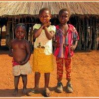 Дети Замбии :: Евгений Печенин