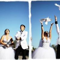 Запуск голубей :: Salamat K.