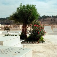 Еврейское кладбище. :: Victoria Kovalenko