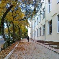 осень в Ташкенте :: Дилдора Туляганова