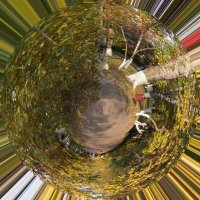 зелёная планета :: Lisi Misa