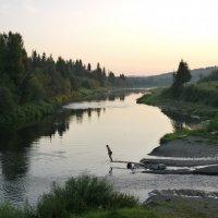 купание на закате :: валерий телепов