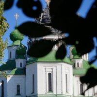 станица Старочеркасская :: Юлия Кулиева