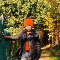 В первый раз в деревне... :: Юлия Кулиева