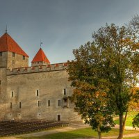 Остров Сааремаа, Эстония :: Андрей Саяпин