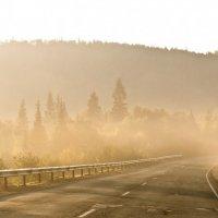 утренний туман :: Алёна Тайга