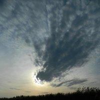 Осеннее небо :: Lina Liber