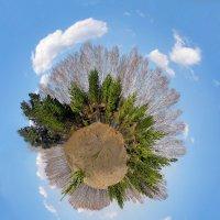 Размышляя о красоте Земли :: Виктор Ковчин