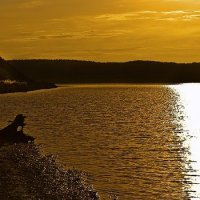 страж берега :: Елена Баландина