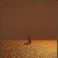 Золотой закат :: Vlad Mak