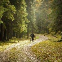 Прогулка уставшего велосипедиста осенним днем :: Vasiliy V. Rechevskiy