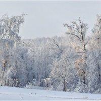 холмистая зима :: Valery Arhipovich