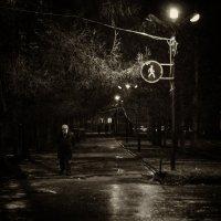 Вечерняя прогулка :: Евгений Елисеев