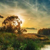 Солнце идет к закату. :: Andrei Dolzhenko