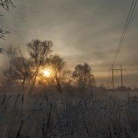 Серый рассвет :: Олег Самотохин