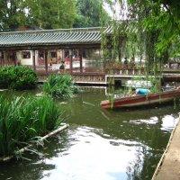 китайский парк :: Maya Shnedovich