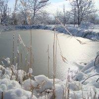 маленькое озеро :: мария