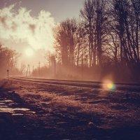 Утренняя дорога :: Андрей Завадский