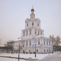 Андроников монастырь :: Марина Назарова