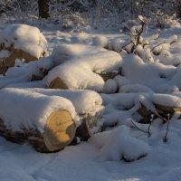 Какого цвета снег? :: Валентин Яруллин