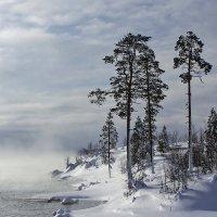 Зима пришла :: Александр