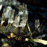 ледяные грибы :: Сергей Леонтьев