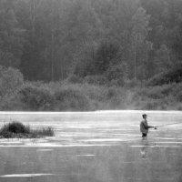 утренняя рыбалка. :: сергей лебедев