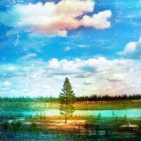 Маленькое Озеро на вечной мерзлоте :: Vladimir (Volf) Kirilin