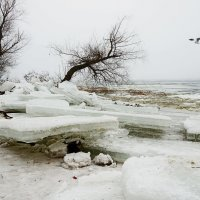 зима :: Анатолий Еванков
