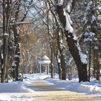 Было в Кишинёве 10 дней зимы...) :: Леонид Школьный