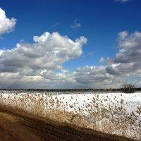 мартовское небо :: Виктор Масальский