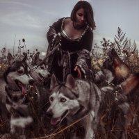 Время охоты :: Werdna Шустикевич