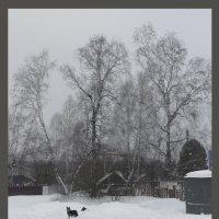 Зимний мотив :: Алексей Хвастунов
