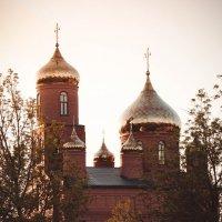 Свято-Дмитриевский храм :: Елена Багрий