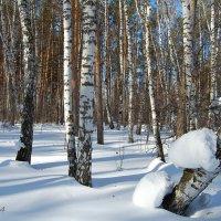 Ещё зима... :: Татьяна Аистова