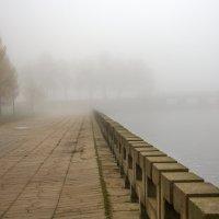 Утро :: Николай Климович